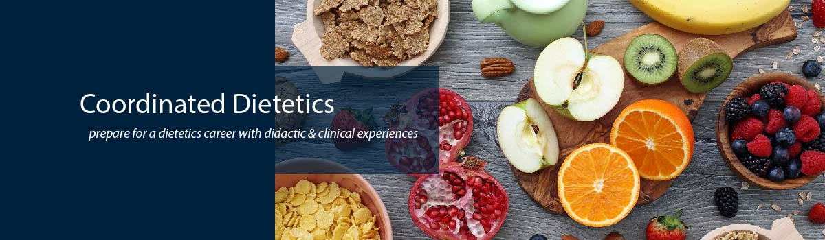 colorful healthy food - Coordinated Dietetics Program - prepare for a dietetics career with didactic & clinical experiences