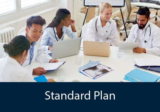 AHS Major Standard Plan - a group of diverse medical students working together at a table with laptops and charts