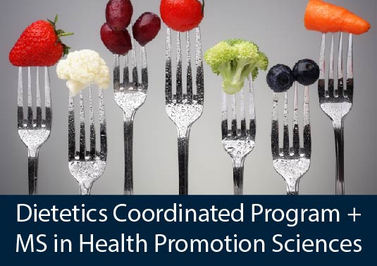 forks displaying colorful healthy food - Dietetics Coordinated Program + MS in Health Promotion Sciences